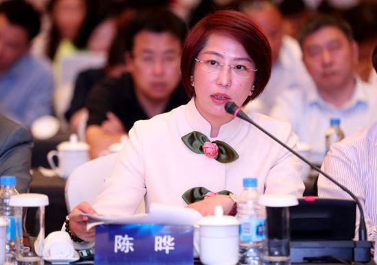陈晔总裁在专题座谈会上发言