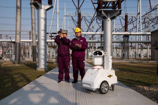 国网上海检修公司线路运维人员使用无人机开展巡视。