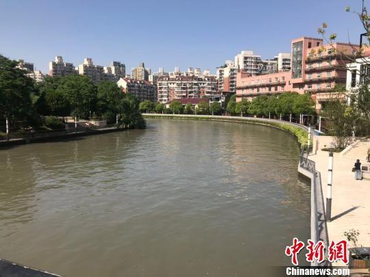 苏州河。 王子涛 摄