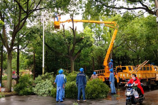 图:10日13时,该公司线路运行班对上海市金山区东泉新村10千伏电力线路进行高空抢修。
