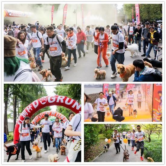 红狗营养膏助力狗狗健康彩跑第三站于上海举办