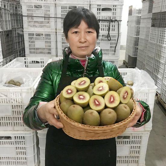 图:受疫情影响,四川产的猕猴桃出现了滞销的问题。