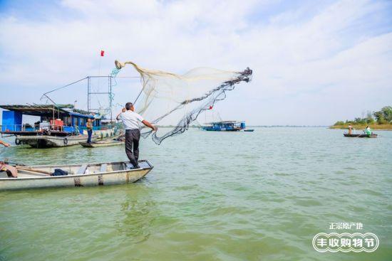 图:洪泽湖大闸蟹在天猫强势突围。
