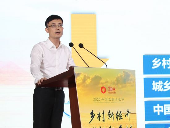 张江镇党委副书记、镇长王庆