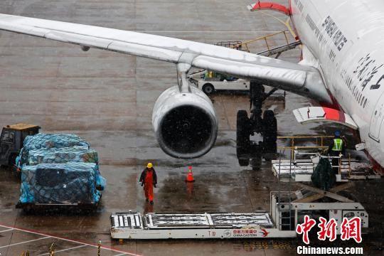降雪天气致上海铁路航空交通受阻