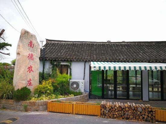 """特石模式助力上海浦东打造都市绿色农业""""大..."""