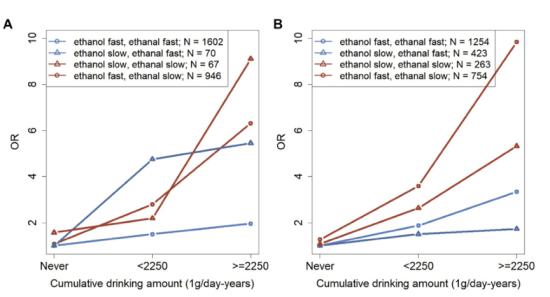 中国学者率先揭示饮酒和遗传交互作用增高?#20928;?#39135;管鳞癌风险