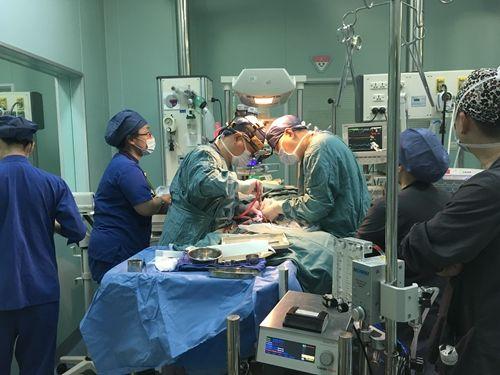 皇家彩票网官方客服:上海儿童医学中心:多学科合作救治出生4小时复杂先心患儿
