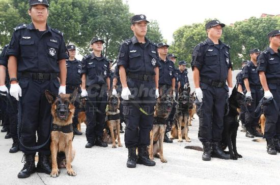 上海浦东警方全面启动携犬巡逻