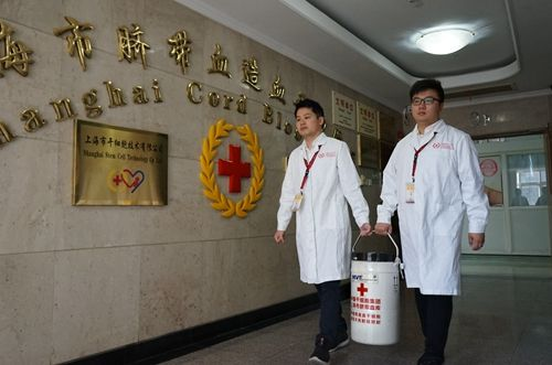 买彩票中大奖的技巧:血脉相连!巴基斯坦男子上海成功移植脐带血